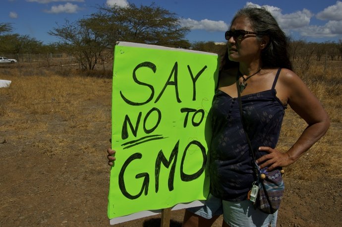 Hawaii: The GMO Testing Ground For Decades